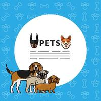 five dogs pets mascots breed characters with lettering in circular frame vector