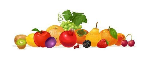 Composition of fruits. Pomegranate, orange, plum, kiwi, strawberry, pear, sweet cherry, persimmon, lemon, blackberry, apple, grape, peach, orange. Vector illustration isolated on white background.