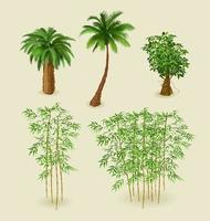 Tropical plants and bamboo on a light background for interior design in isometric. Vector illustration