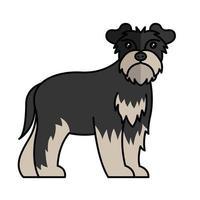 schnauzer dog pet mascot breed character vector