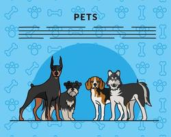 four dogs pets mascots breed characters and letterings vector