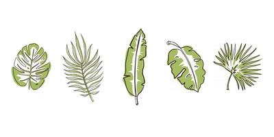 Green Exotic Leaves Set vector