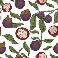Seamless pattern with mangosteen vector