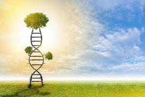 DNA is a natural tree background style. photo