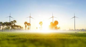 Wind turbine or wind power Translated into electricity, environmental protection Make the world not hot. photo