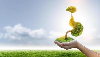 el estómago del árbol es una ilustración 3d del concepto médico ambiental. foto