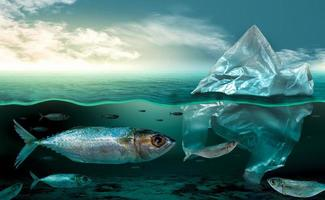 Plastic pollution in marine environmental problems Animals in the sea cannot live. And cause plastic pollution in the ocean Environmental concept photo