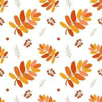 Seamless autumn pattern of rowan leaves and berries vector