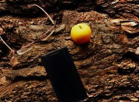 Yellow apple, glasses and cellphone flat lay on tree bark photo