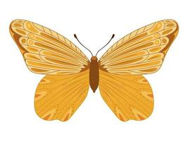 yellow butterfly icon vector