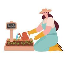woman planting tomato vector