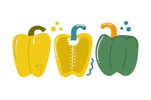 Hand drawn sweet bell pepper, bulgarian pepper, paprika. Vegetable concept. Flat illustration. vector