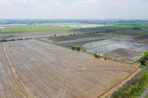 Aerial view from flying drone of field rice with landscape green pattern nature background, top view field rice photo