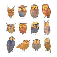 Vector colorful set with illustrations of cute owls isolated on white background. Can be used as elemets for your design for greeting cards, nursery, poster, card, birthday party, packaging paper design, baby t-shirts prints