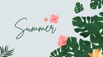 Summer background, illustration and web banner vector