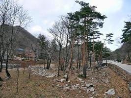 ciudad de sokcho corea del sur - febrero de 2018 hermoso lugar en el parque nacional de seoraksan con vistas a las montañas en la niebla foto