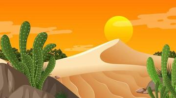 Desert forest landscape at sunset time scene with many cactuses vector