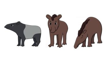 conjunto de tres vectores lindo contorno doodle dibujos animados joven marrón y negro blanco sur americano pinchaque tapirus montaña salvaje ecuador, tapires adultos malayos o asiáticos. ilustración dibujada a mano aislada