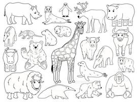 Set of doodle animals. Vector outline cartoon isolated graphic hand drawn illustration. Giraffe bear orangutan ox rhino wombat highland cow seal tapir anteater yak hippo capybara penguin armadillo