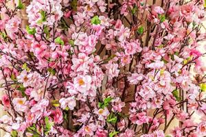 Branches with pink sakura flowers on blurred background photo