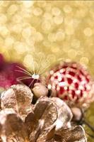 Dandelion fluff with a drop of water on a blurred background of Christmas photo