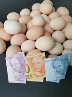 investment in organic egg with brazilian money for healthy food photo