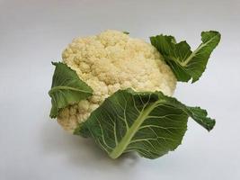 white cabbage of natural origin to prepare vegetarian food photo