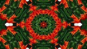 abstrakt färgrikt symmetriskt och hypnotiskt kalejdoskop video
