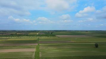 champs verts avec des nuages video