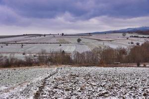 Nice winter landscape photo