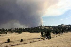 Parched meadow and trees in front billowing smoke from Johnson fire in Gila National Forest photo