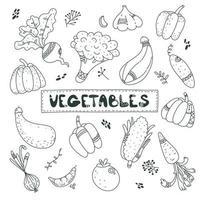 Cute black line doodle set about vegetables, carrot, garlic, onion, pumpkin, zucchini, beet, pepper, tomato, cucumber. Funny, cute illustration for seasonal design, textile, decoration kids playroom or greeting card. vegan food. autumn harvest. scandi Ske vector