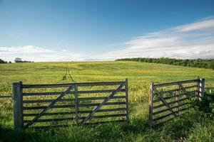 A Countryside Gate photo