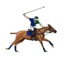 Equestrian polo with a jockey from splash of watercolors, colored drawing, realistic, Horseback riding. Vector illustration of paints
