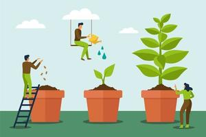 Stage of growth of the plant with people care it vector