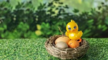 Easter eggs in a natural nest and decorative chicken on a blurred green background photo