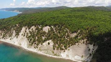 Wooded Coastal Area video