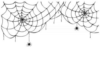 Cobweb background. Scary spider web with spooky spider, isolated on white background. Hand drawn. Halloween decor, net texture tattoo design vector template.