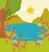 animales ciervos laguna vector