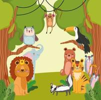 Animals jungle cartoon vector