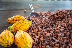Cocoa pods and cocoa beans On a wooden background photo