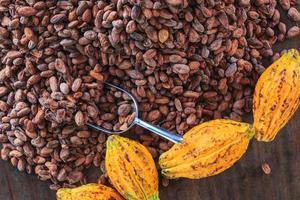 Las mazorcas de cacao y granos de cacao sobre un fondo de madera foto