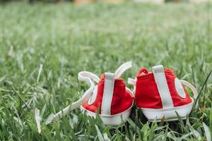 Cute red small canvas shoes on the grass photo