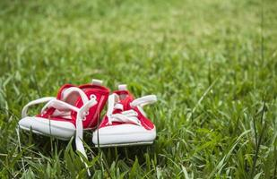 lindos pequeños zapatos de lona rojos en la hierba foto