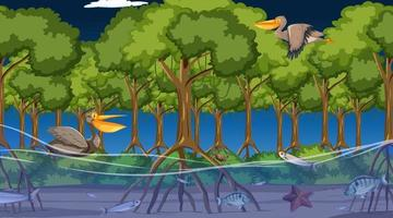 Animals live in mangrove forest at night scene vector