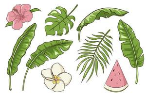 Hand Drawn Exotic Flowers and Leaves Vector Isolated Elements Collection