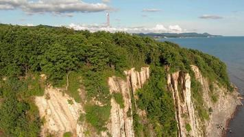 Aerial of A Coastal Forest Cliff video
