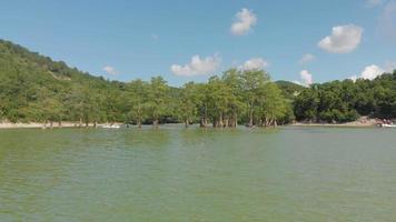 árvores no lago da montanha video