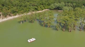 lago de montanha e um pântano com ciprestes video