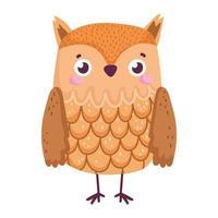 cute owl bird animal cartoon isolated icon vector